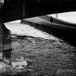 Puente de Ginebra