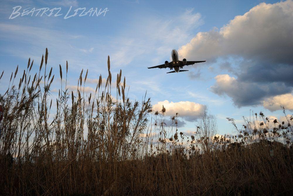 Viajar en avión en dos minirelatos