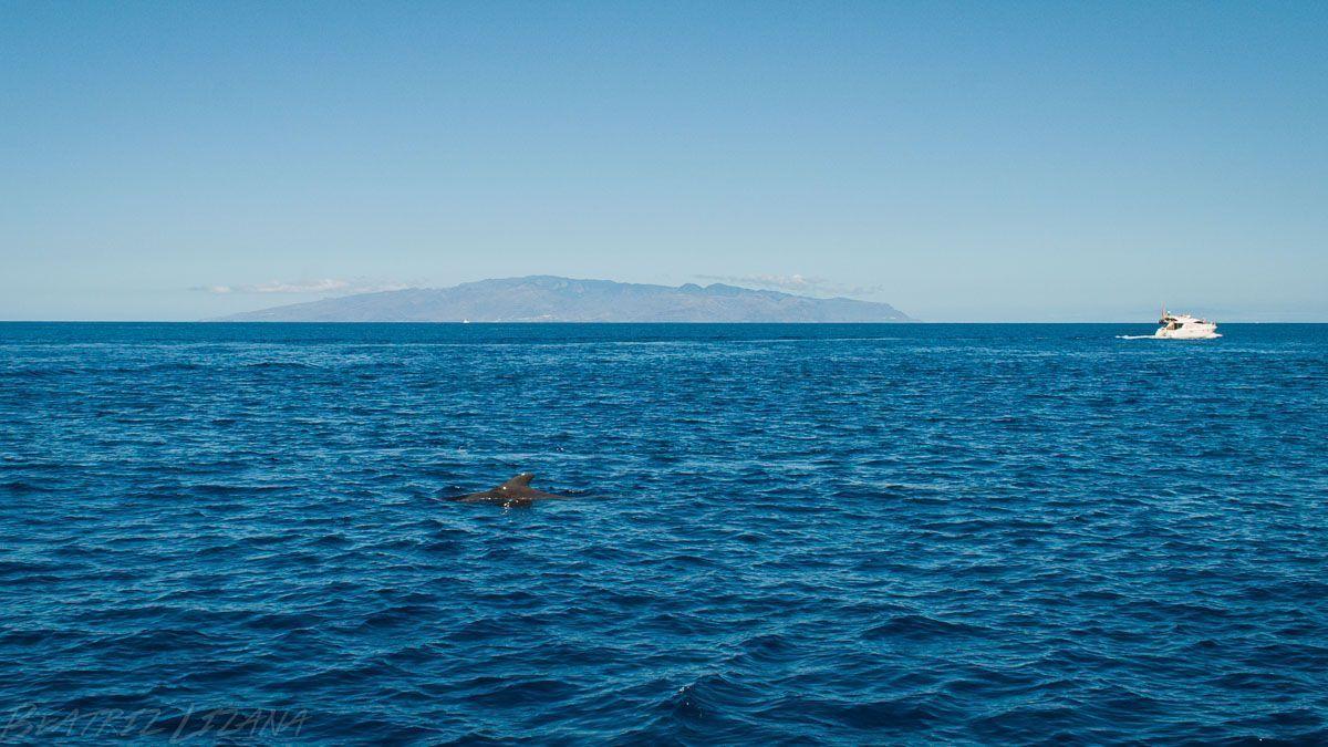 vista de la Gomera desde Tenerife